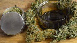Kenevir Yağı THC(Tam Ekstrakt) Nedir?